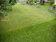 Lawn Care Treatments By Specialist Companies In Sheffield